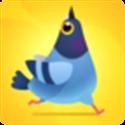 乱啄的鸽子 V1.1.3 安卓版