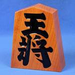 日本皇室典范word版