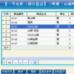 恩尚进销存财务管理系统 2011.8.8 绿色版