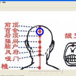 中医穴位图注与解 v1.1 正式版