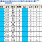 荣兴新生分班系统 build 20130520 初高中版