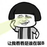 宠物炫QQ表情 V4.01官方版