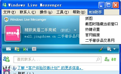 精致美眉MSN助手 v1.0