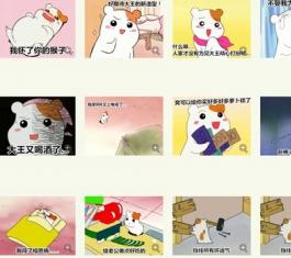 看家鼠QQ表情包50P 官方版