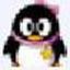 小灰QQ机器人官方版v1.0.1304.09