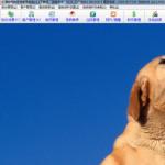 易软宠物医院管理软件 v2.2 绿色版