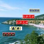 山东省非税收入缴款书管理软件 v9.01官方版