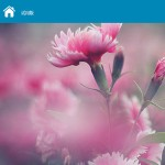 E-Gallery触摸屏图片滑动白板软件 v1.0.0.050免费版