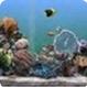 热带鱼屏保汉化版 v3.3.6041